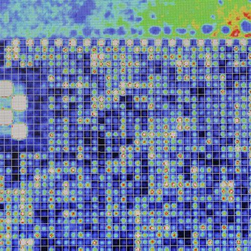 """Scan d'une puce à ADN mise sous fluorescence pour identifier le génotype de tous les marqueurs. Equipe génétique et biothérapies des maladies dégénératives du système nerveux et endocrinien. Unité de recherche 986 Inserm """"Génomique, facteurs environnementaux et biothérapie des maladies endocriniennes et neurologiques"""", Le Kremlin Bicêtre (Val-de-Marne)."""